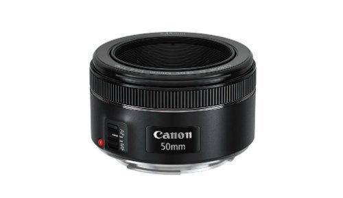 Best Canon Lens reviews