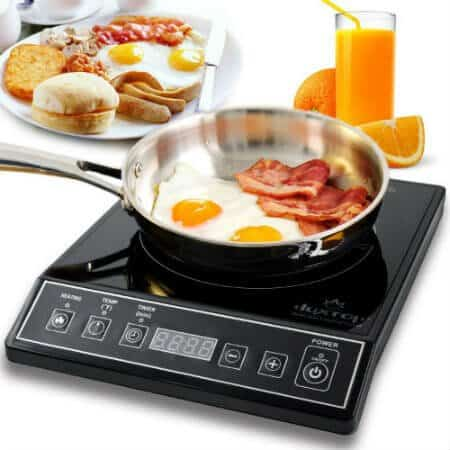 Best Induction Cooktop Countertop Burner reviews
