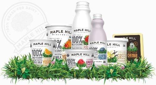 Maple Hill Creamery Organic Plain Greek Yogurt